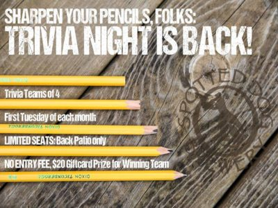 Trivia Night - Monthly!